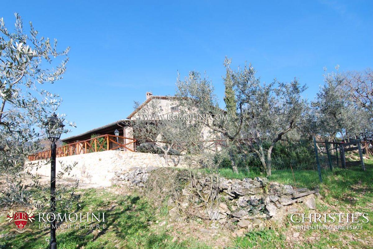 Casale con oliveto in vendita lago di corbara for Lago in vendita