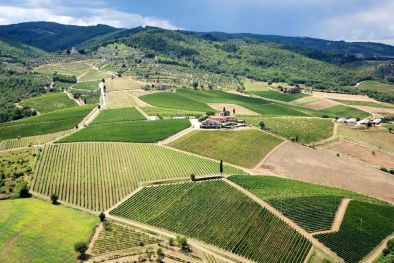 FATTORIA VITICCIO, GREVE IN CHIANTI, E' STATA VENDUTA DA AGENZIA ROMOLINI IMMOBILIARE ǀ Christie's International Real Estate