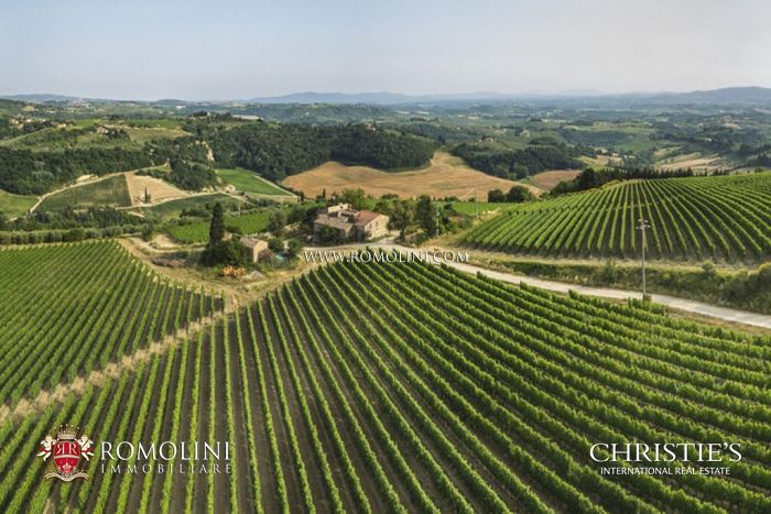 CHIANTI COLLI FIORENTINI, ESTATE WITH VINEYARD AND OLIVE GROVE FOR SALE, Certaldo, Chianti Colli Fiorentini, Chianti Colli Fiorentini Riserva, IGT, Vinsanto